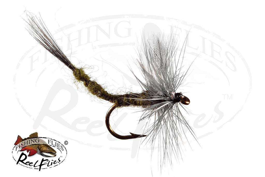 Blule Wing Olive Extended Body