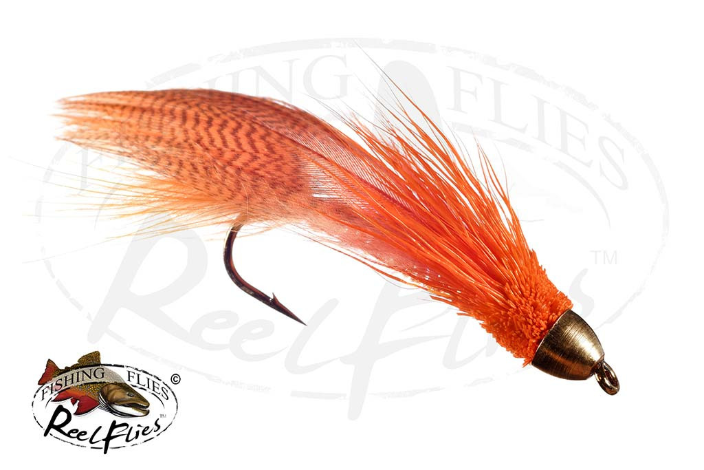 CH Zoo Cougar Orange Streamer