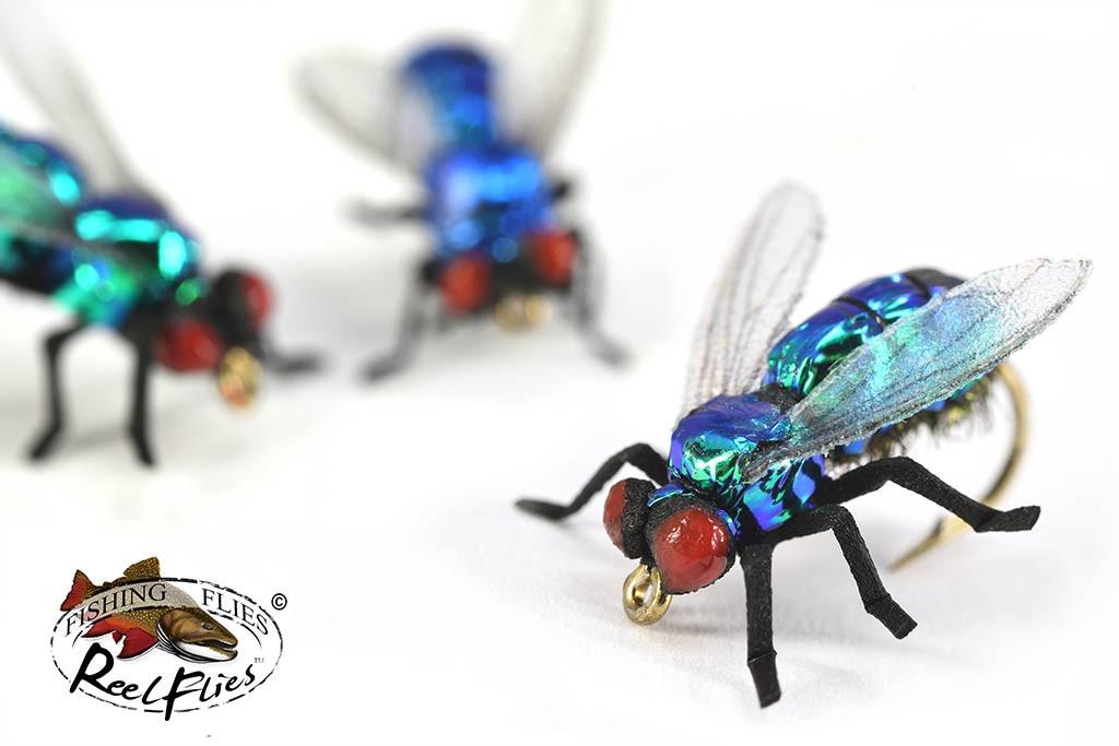Realistic Blue Bottle Fly