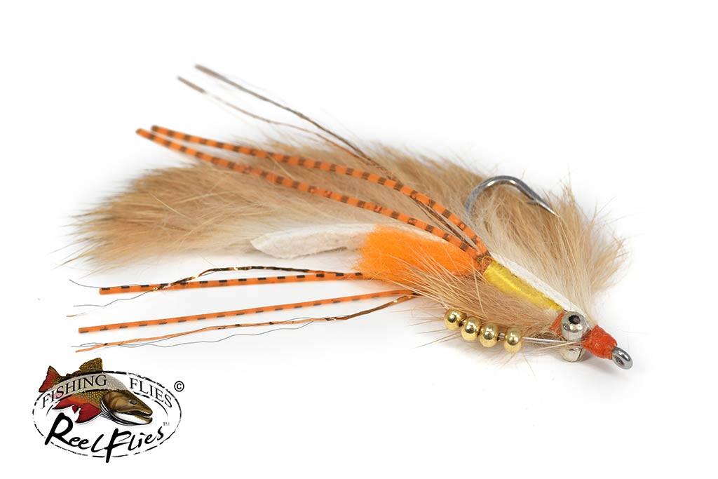 Avalon Shrimp