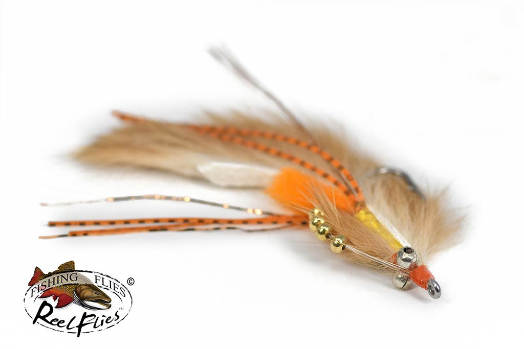 Avalon Permit Shrimp