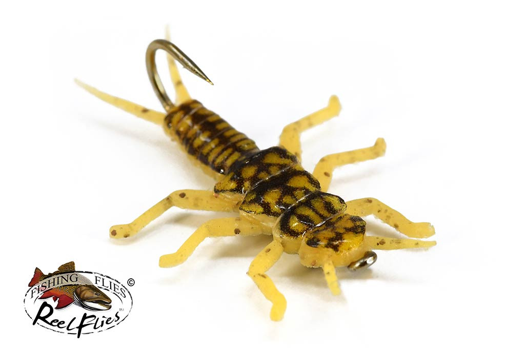 Realistic Golden Stone Fly