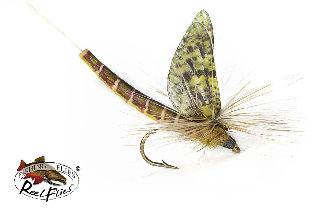 Realistic Easter Green Drake Mayfly