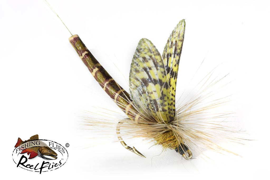 Realistic Easter Green Drake Dry Fly