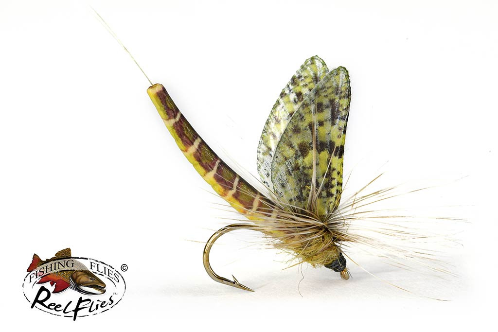 Realistic Easter Green Drake Fly