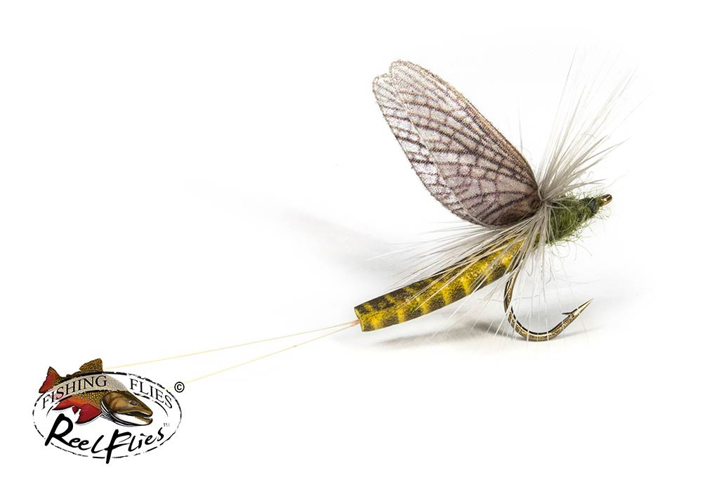 Realistic Western Green Drake Fly