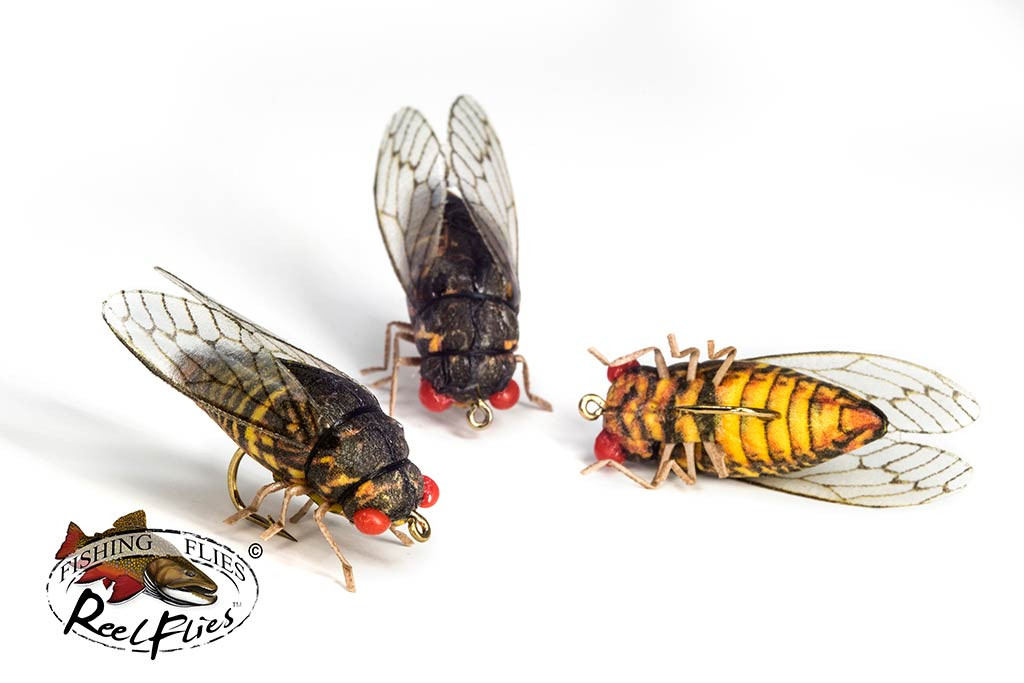 Realistic Cicada Fishing Fly
