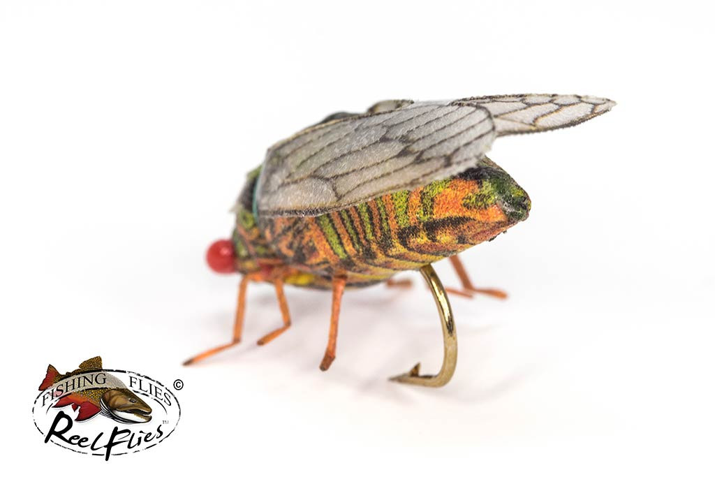 Realistic Cicada Fly Olive Colours