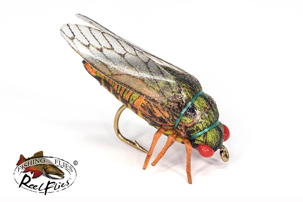 Realistic Cicada Fly Olive