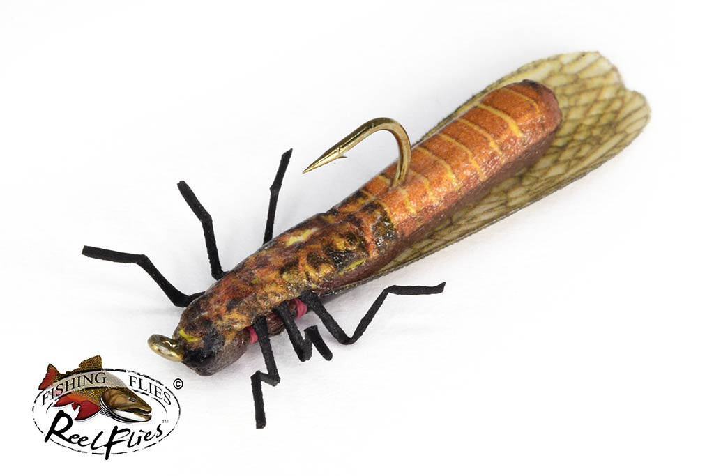 Realistic Salmonfly Stonefly Dry Fly