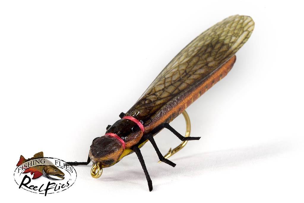Realistic Salmonfly Stonefly
