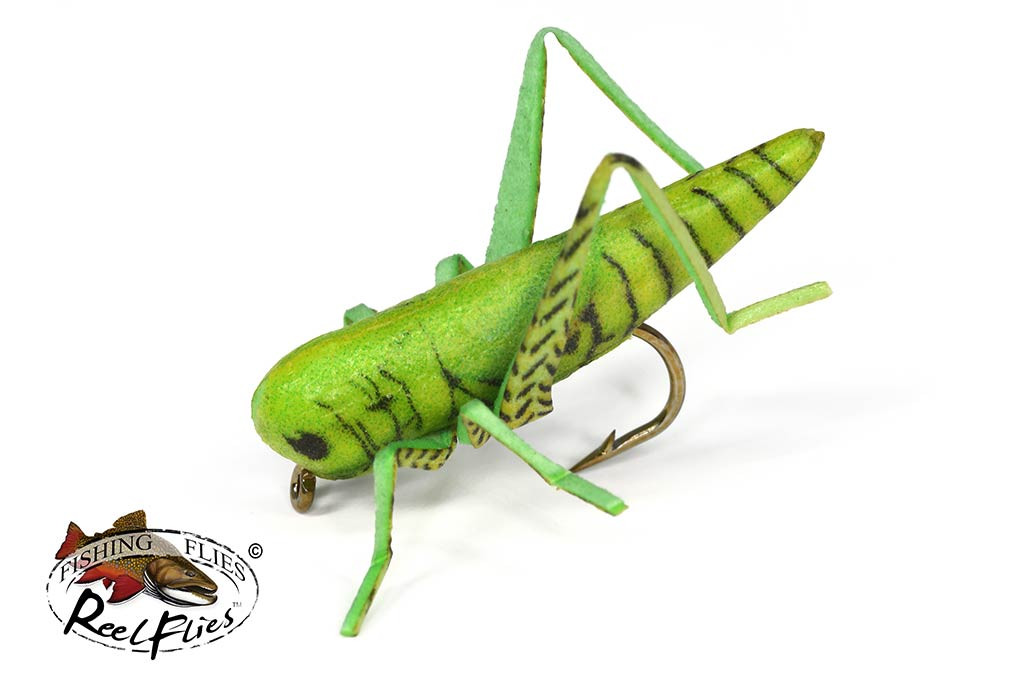 Realistic Green Grasshopper Fly
