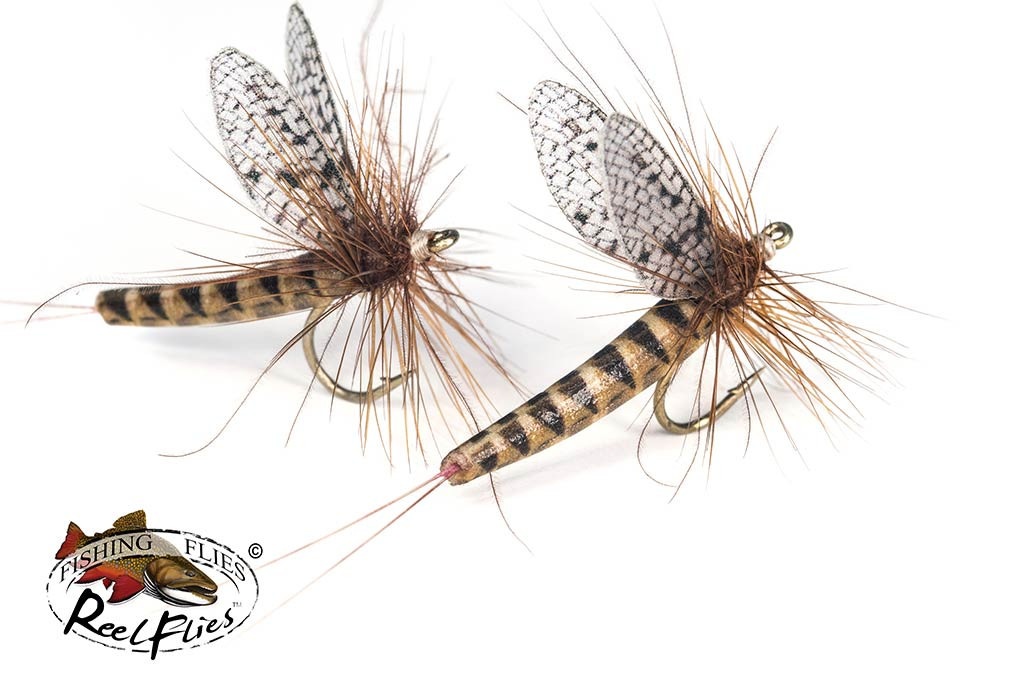 Realistic March Brown Mayfly