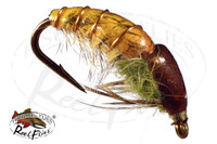 Rocky Mountain Pupa Tan