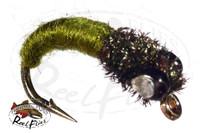 SRI Caddis Larva