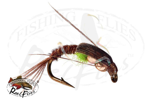 DBH Pheasant Tail Nymph Olive