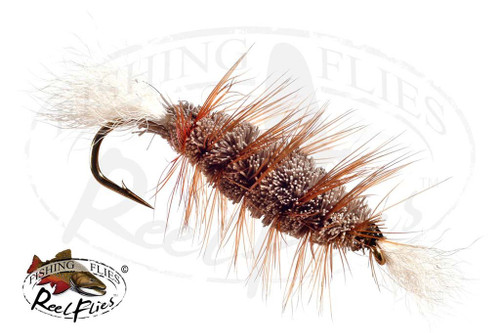 Bombers Brown Body White Tail