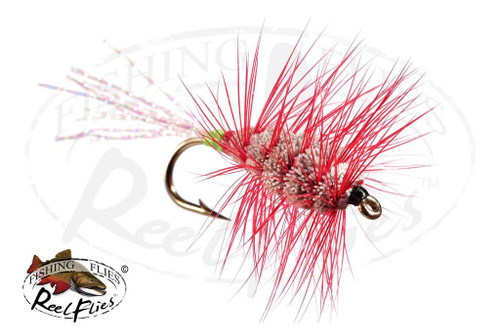 Glitter Bug Natural Body, Red Hackle, Green & Red Butt