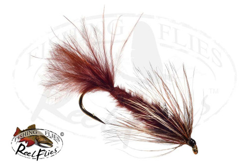 Filoplume Leech Brown