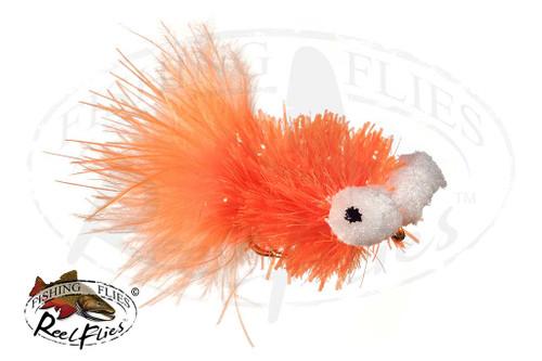 Mega Booby Orange & White Eye