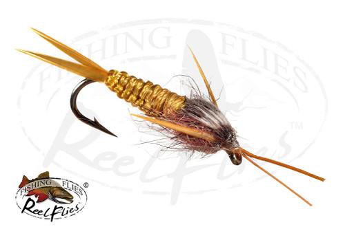 Golden Braided Stone Fly