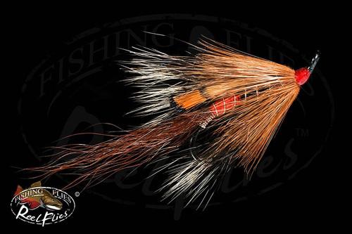 Allys Shrimp Brown