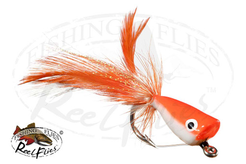 Popper Orange White Belly