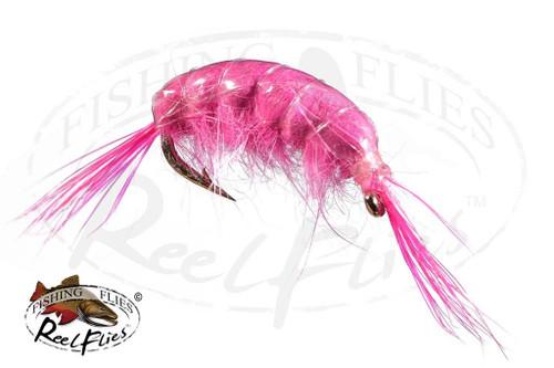 Scud Pink
