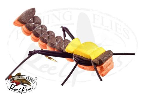 Foam Hopper Orange Brown