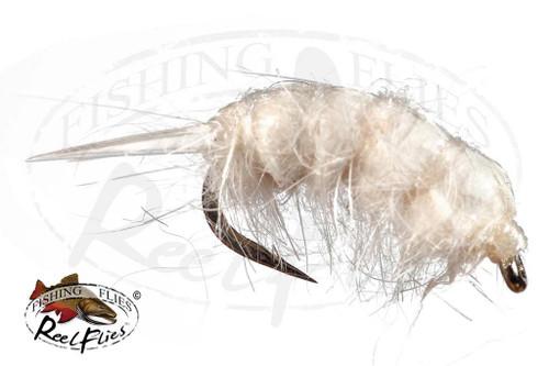 Sowbug Cream