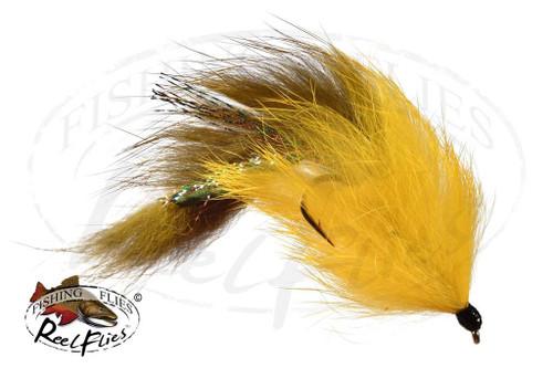 Flesh Fly Olive & Yellow Body