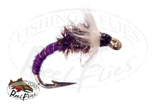 Chironomid Purple