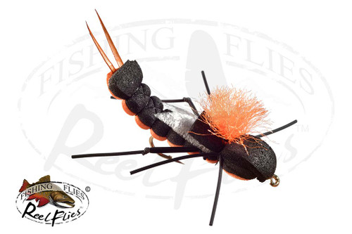 Foam Cricket Orange Black
