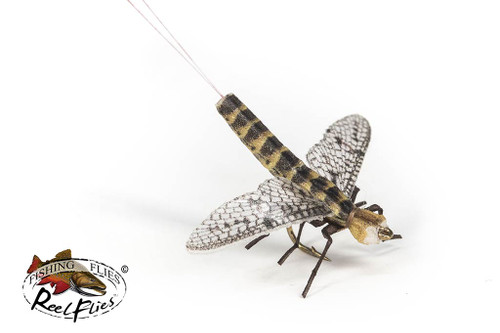 Realistic Brown Drake Mayfly