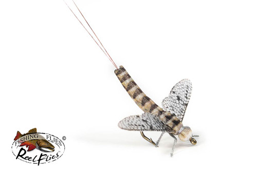 Realistic Grey Drake Spent Mayfly