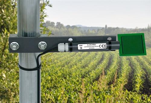 Onset Leaf Wetness Smart Sensor- NS-LWA-M003