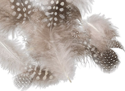 0.1 Ounce Guinea Natural 2-4 Inches Feathers - Approximately 95 Feathers `