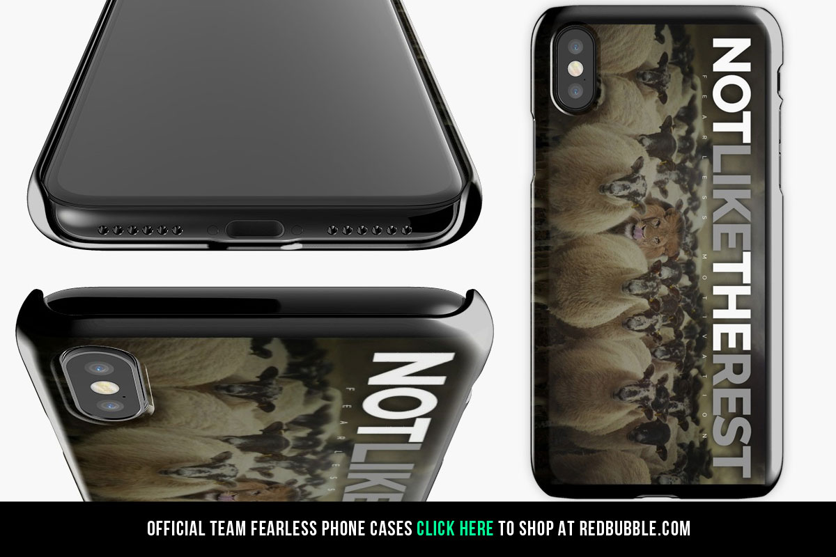 phone-cases-2.jpg