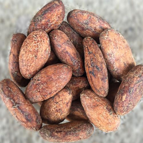 Raw Cacao Beans - Ecuadorian Nacional (Arriba)