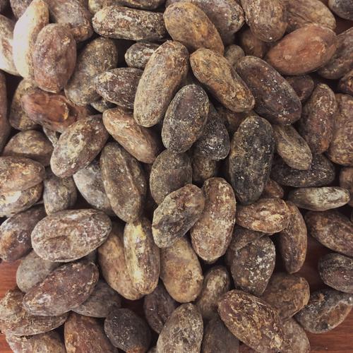 CocoaSupply Hispaniola Cacao