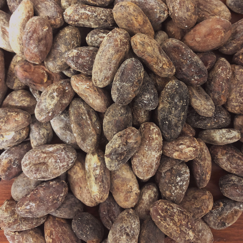 CocoaSupply Hispaniola Cacao