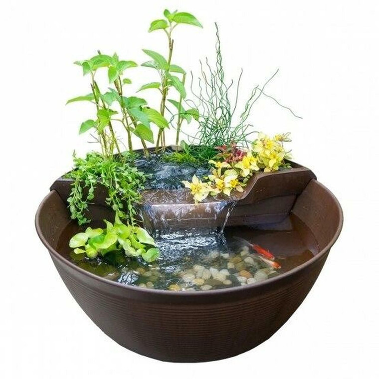 AquaGarden Mini Pond Kit in use with fish and plants