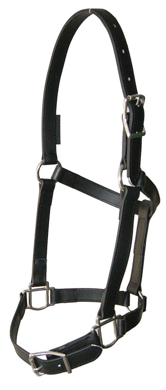 Buckle Nose Halter