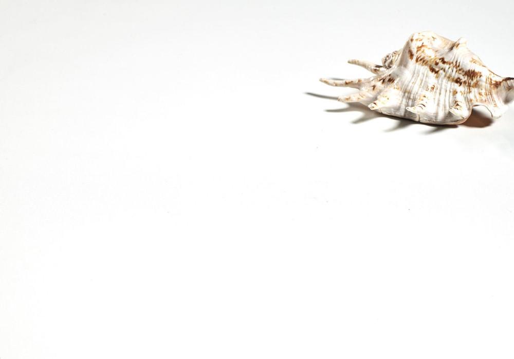 Vanity Stone Bench Top - Super White 1500 x 460