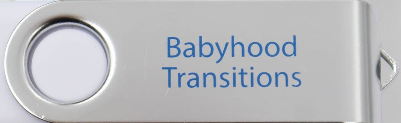 06-Babyhood Transitions 4-Part Video Series (USB Computer Read-Only Drive-Mac/PC)