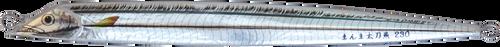 Sea Falcon Real Cutlassfish 180g 01 Mirror Holographic
