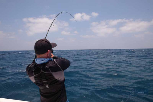 ASWB Elsea PE3 Rod in action