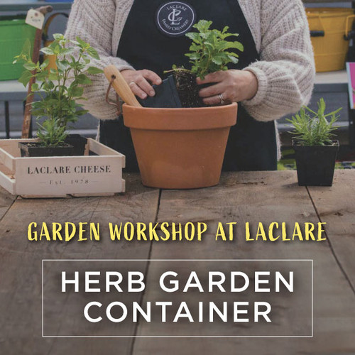 Garden Workshop - Herb Garden Container