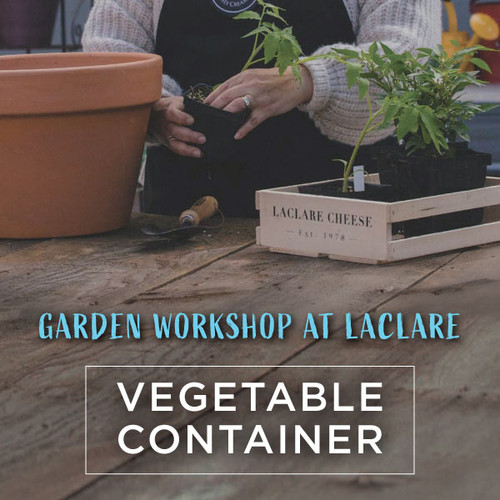 Garden Workshop - Vegetable Container