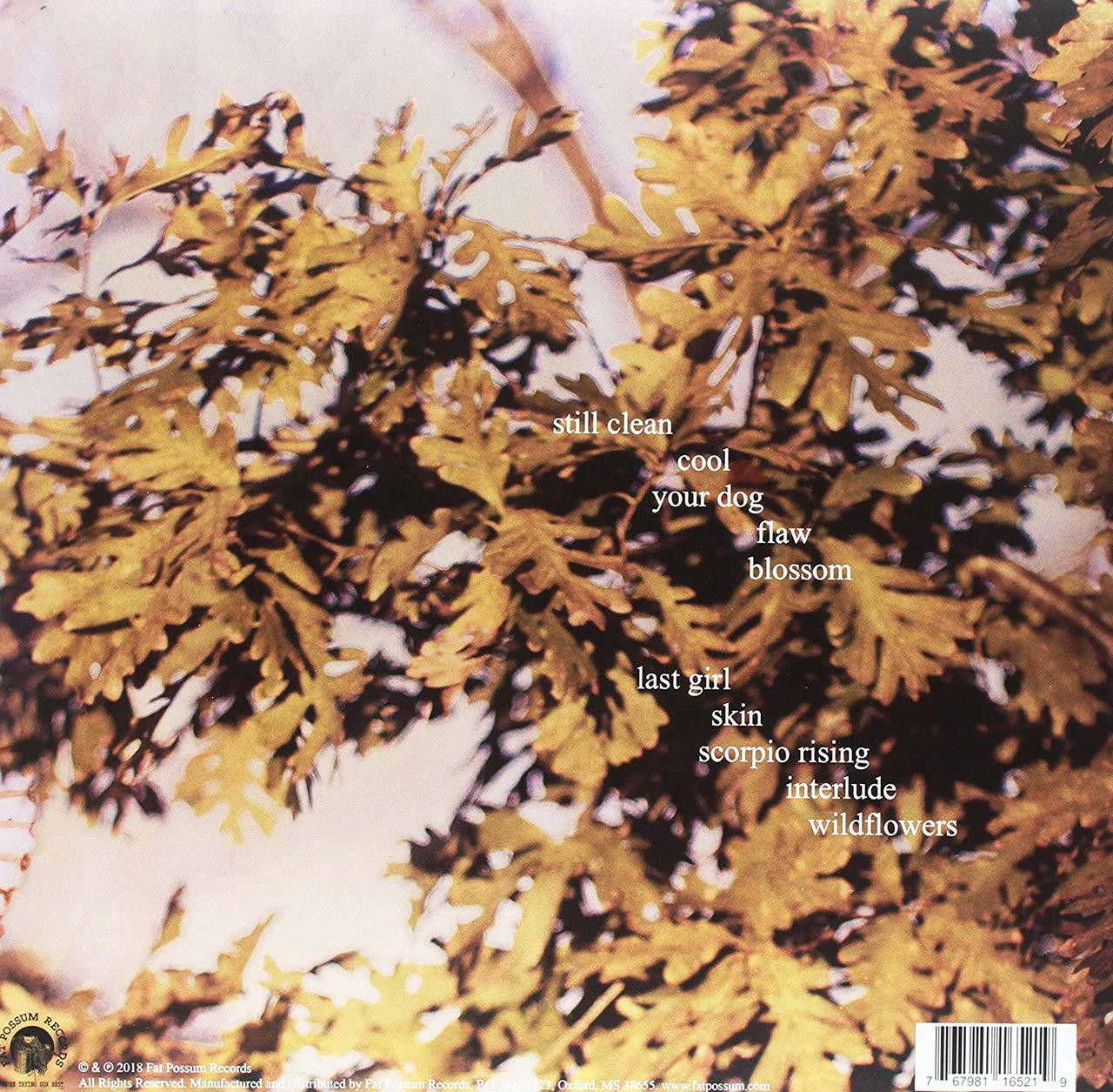 SOCCER MOMMY -CLEAN VINYL LP-Brand New-Still Sealed
